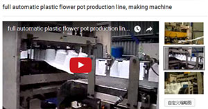 Automatic Thermoforming Machine for Plastic Flower ot